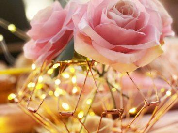 Roses - 1nikah